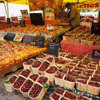 tons of colorful fruits